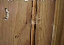 قیمت چوب روسی دست دوم
